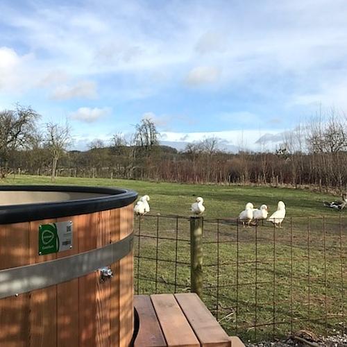 csm Hottub uitzicht schapenweide2 ROP426x426 6f76c079c7 1