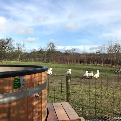 Hottub uitzicht schapenweide2 ROP426x426