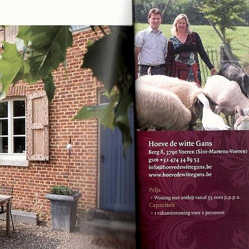 csm BrochureWelkomThuis1 426x426 19 c1965b2367 1