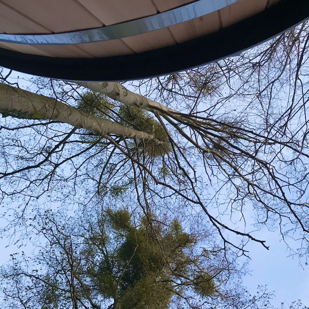 Hottub onder de bollen mistletoe (maretak)